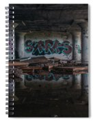 Reflections Of Decay Spiral Notebook