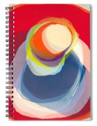 Reflective Spiral Notebook