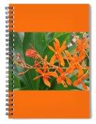 Renanthara Tom Thumb Spiral Notebook