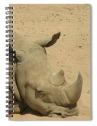 Resting Rhinoceros With His Head Down In A Sandy Area Spiral Notebook
