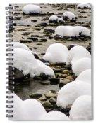 Rhine Winter Spiral Notebook