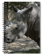 Rhino Standing In The Shade On A Summer Day Spiral Notebook