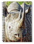 Rhino Zen Spiral Notebook