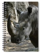 Rhinoceros With Two Horns Up Close And Personal Spiral Notebook