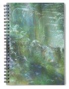 River Spirits Spiral Notebook