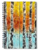 Dreamside Spiral Notebook