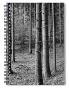 Road Passing Through Forest, Stuttgart Spiral Notebook