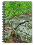 Rock On Green's Hill Spiral Notebook