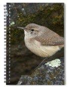 Rock Wren Spiral Notebook