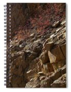 Rocky Bend  Spiral Notebook