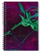 Roped Heart Spiral Notebook
