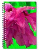 Rose Of Sharon Rain Drops Spiral Notebook
