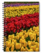 Row After Row After Row Of Tulips Spiral Notebook