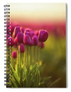 Rows Of Magenta Painterly Tulips Spiral Notebook