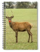 Rudolph The Red Nosed Reindeer Spiral Notebook