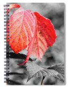 Rusty Leaves Spiral Notebook