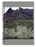 Saddle Rock And Apple Blooms Spiral Notebook