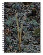 Saguaro Spines Spiral Notebook