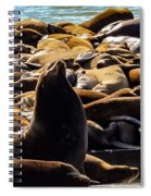 San Francisco's Pier 39 Walruses 1 Spiral Notebook