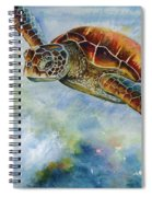 Save The Turtles Spiral Notebook