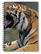 Say Ahhhhhhh Spiral Notebook