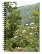 Scenic Mountain Range Spiral Notebook