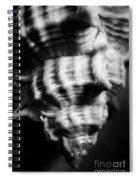 Sea Spiral  Spiral Notebook