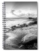 Seashells On The Seashore In Black And White Spiral Notebook
