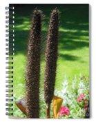 Seed Stalks 2 Spiral Notebook