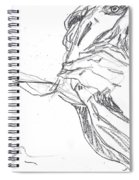 Self-portrait Pencil Reach 2 Spiral Notebook
