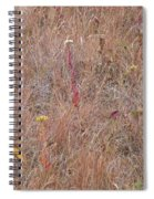 September's Hidden Treasure Spiral Notebook