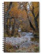 Serene Stream In Autumn Spiral Notebook