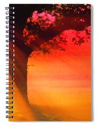 Shade Tree At Dawn Spiral Notebook