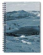 Shadowy Grasslands Spiral Notebook