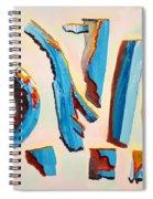 Shards Spiral Notebook
