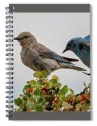 Sharing A Perch Spiral Notebook