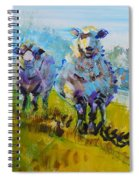 Sheep And Lambs In Bright Sunshine Spiral Notebook