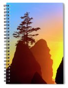Shi Shi Sea Stacks Spiral Notebook