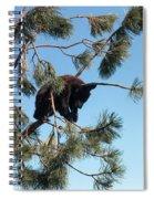Sleeping Bear Cub Spiral Notebook