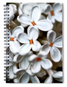 Small White Flowers Digital Spiral Notebook