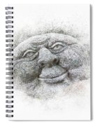 Smiling Stone Face Spiral Notebook
