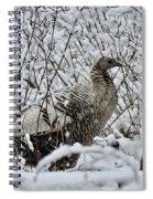 Smoke Phase Turkey 9623 Spiral Notebook