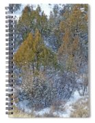 Snow-dusted In West Dakota Spiral Notebook