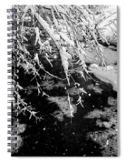 Snow Pa 10-013 Spiral Notebook