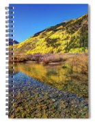 Snowmass Creek Spiral Notebook