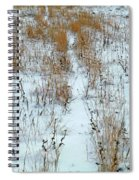 Snowy Path Spiral Notebook