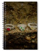 Soldered Rings Spiral Notebook
