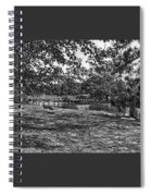 Solitude In Black And White Spiral Notebook