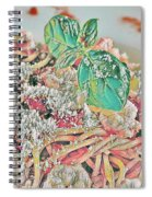 Spaghetti And Shrimp Spiral Notebook