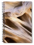 Spare Root 3 Spiral Notebook